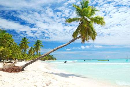 Туры в доминикану на новый год 2015 milletour
