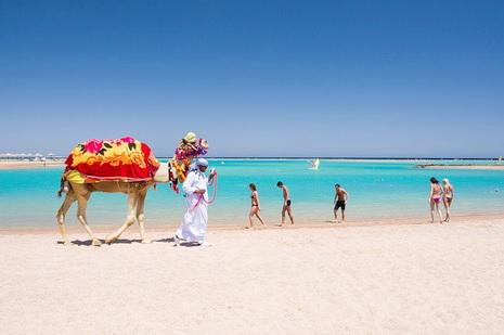отели 5 египта хургада с фото