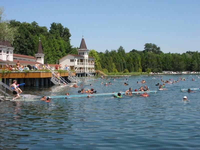 Озеро Хевиз Венгрия - лечебные туры www.milletour.ru