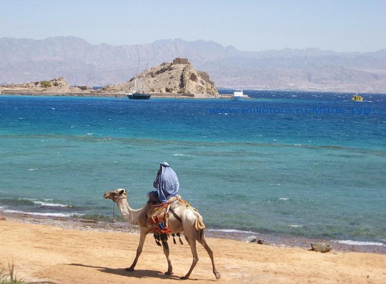 Ситуация с египтом для туристов