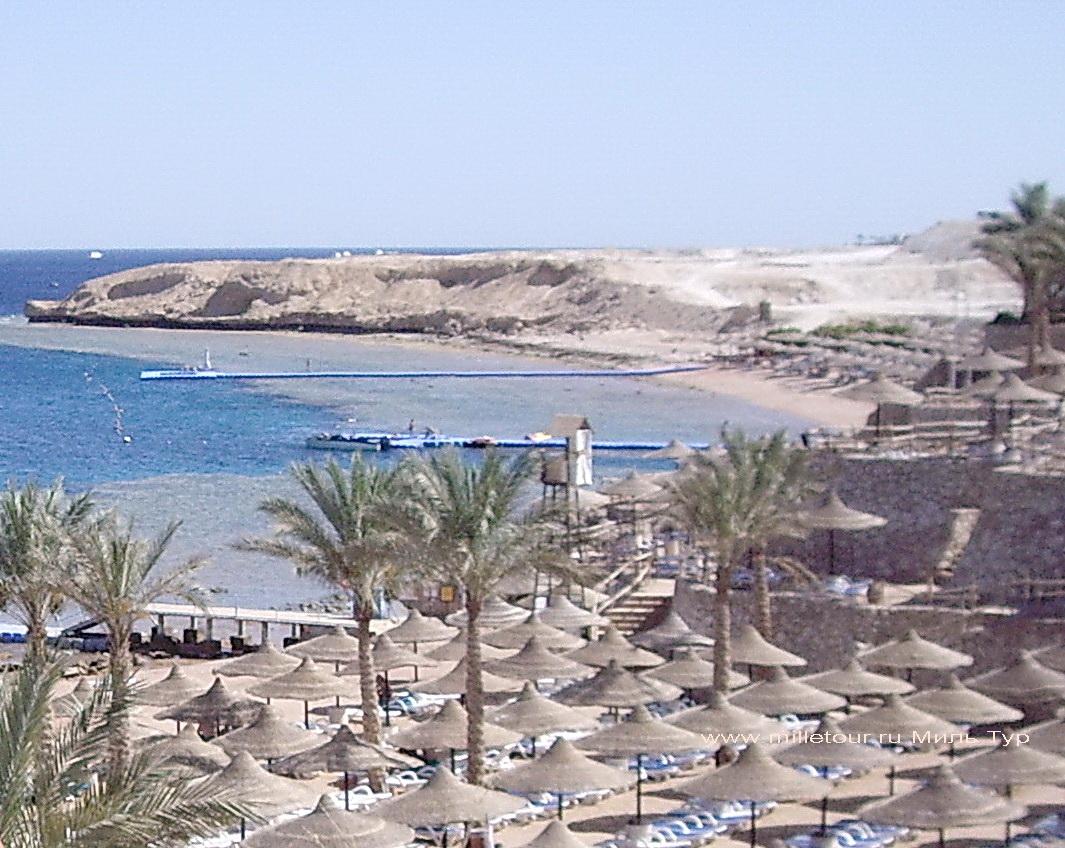 Какая погода в египте по месяцам
